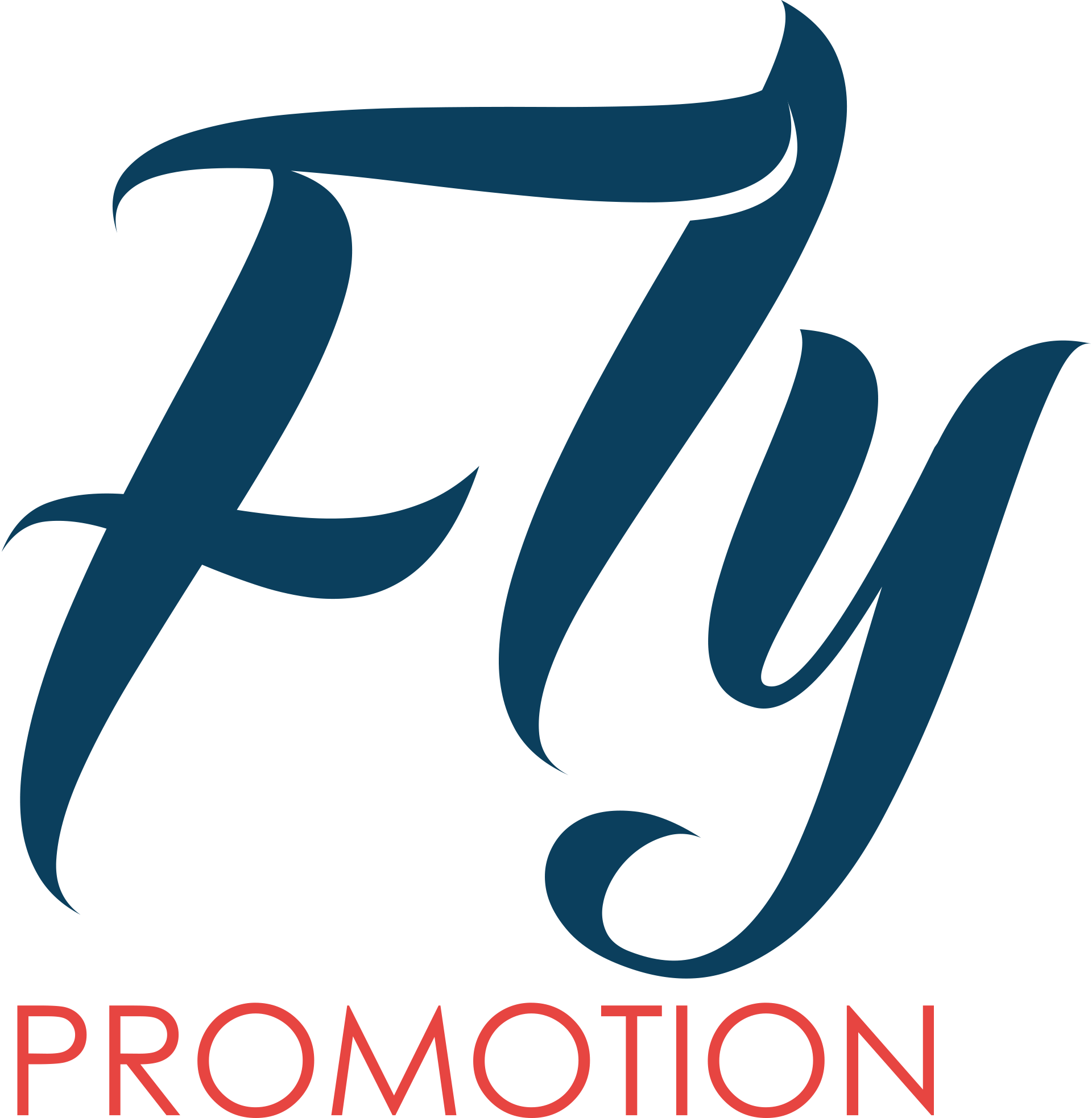 Fly Promotion